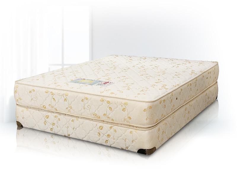 德泰金獅900+網雙人床墊